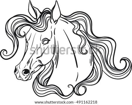 Coloring book horse | EZ Canvas