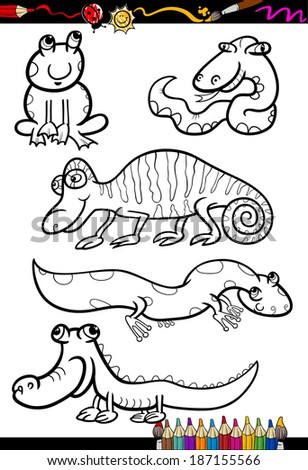 Coloring Book or Page Cartoon Illustration Set of Black and White Reptiles and Amphibian Animals Characters for Children