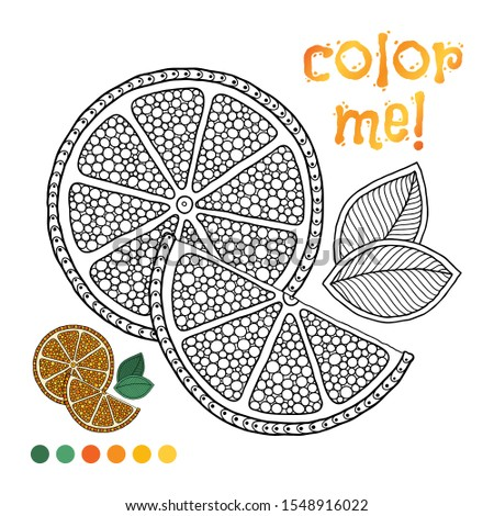 stock vector coloring book page for children with outlines of orange and a colorful copy of it illustration for