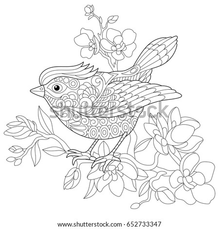 Finch Sitting On A Branch Images