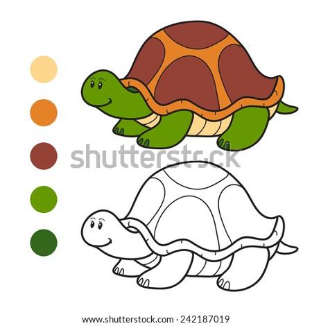 Coloring book (turtle) | EZ Canvas