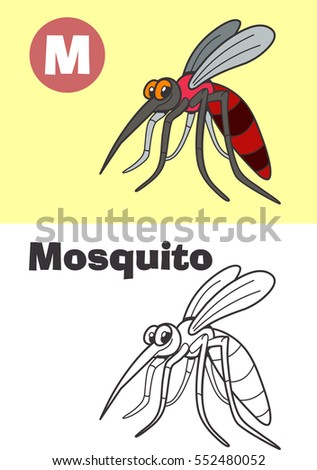 coloring mosquito for children