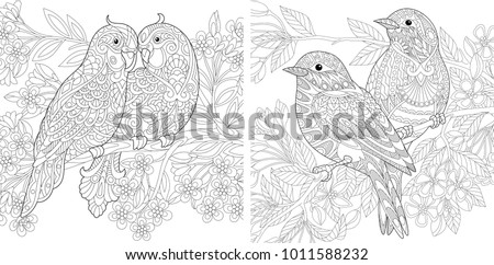 Coloring Page. Adult Coloring Book set. Two Budgerigar parrots in love. Sparrows couple. Spring blooming flowers. Antistress freehand sketch collection for Valentine's Day vintage greeting card.