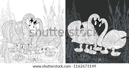 Coloring Page. Coloring Book. Colouring picture with Swan family drawn in zentangle style. Antistress freehand sketch drawing. Vector illustration.