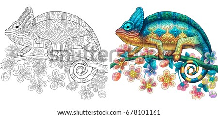 Stock Photo Coloring page of chameleon lizard. Colorless and color samples for book cover. Freehand sketch drawing for adult antistress colouring with doodle and zentangle elements.