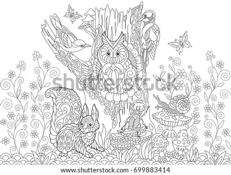 Coloring Page Of Forest Creatures Owl Cuckoo Bird Woodpecker Squirrel Snail