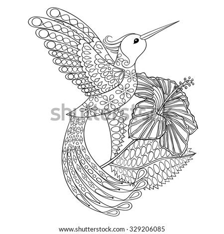 coloring page with hummingbird