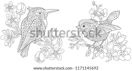Coloring Pages. Coloring Book for adults. Colouring pictures with kingfisher and canary bird. Antistress freehand sketch drawing with doodle and zentangle elements. #1171145692
