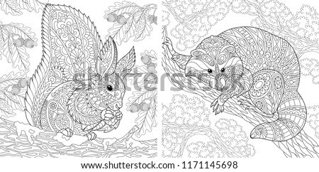 Coloring Pages. Coloring Book for adults. Colouring pictures with squirrel and raccoon. Antistress freehand sketch drawing with doodle and zentangle elements.