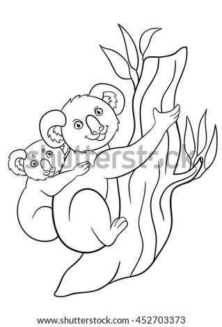 coloring pages mother koala sits on the tree branch with her little