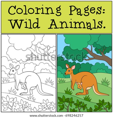Coloring Pages Wild Animals Mother Kangaroo With Her Baby Ez Canvas