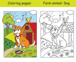 Coloring pages with cute dog listening a song of a bird. Coloring and colored image of dog. Cartoon vector illustration. Stock illustration for design, preschool education, print and game.