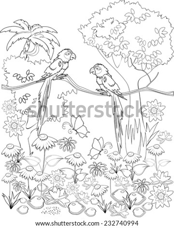 Stock Photo Coloring with parrots on branch