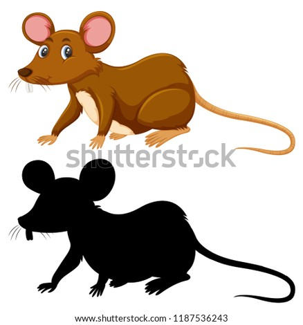 Colour and silhouette of rat illustration