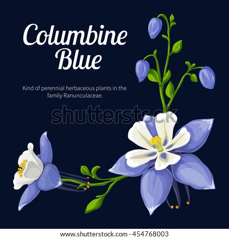 columbine blue