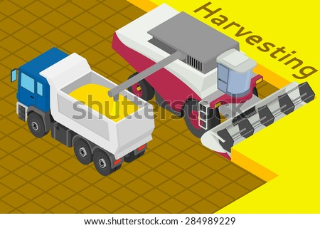 Combine harvester collect wheat in the field. Equipment for agriculture. Loads in the truck - Isometric illustration.