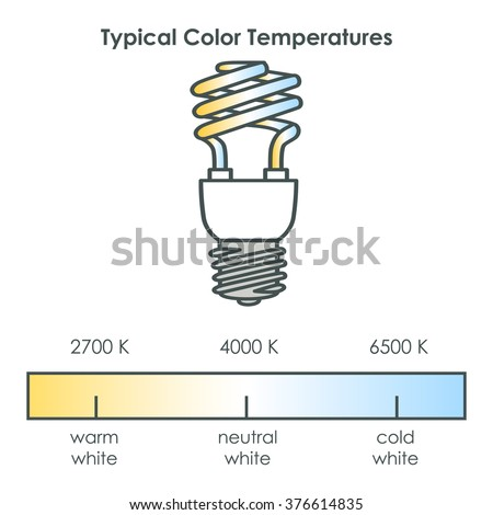Compact fluorescent light bulb with typical color temperatures. Vector illustration.