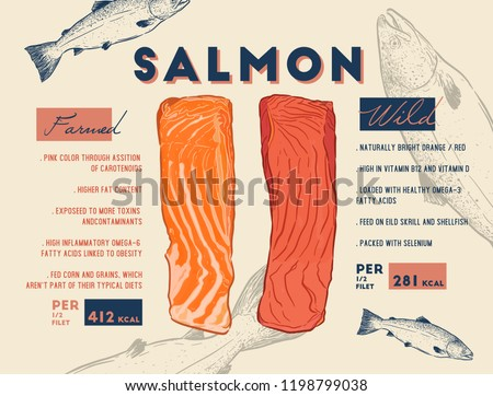 Comparison between wild and farmed salmon filet, where wild salmon has lesser fats and higher color intensity.