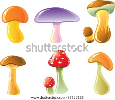 Composition from mushrooms. Vector illustration (EPS8). All parts (object) closed, possibility to edit, without transparence.