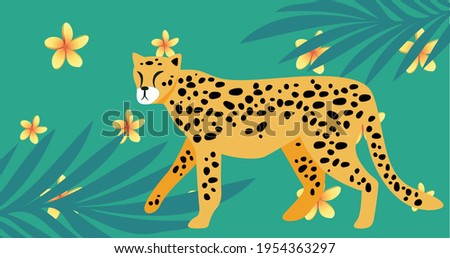 composition of cheetah and