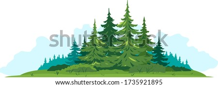 Composition of spruce forest with big green spruce trees in front view isolated, green dense spruce forest and bushes in summer sunny day on blue clouds, European forest clipart illustration