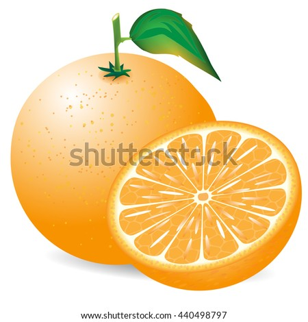 composition of the orange on