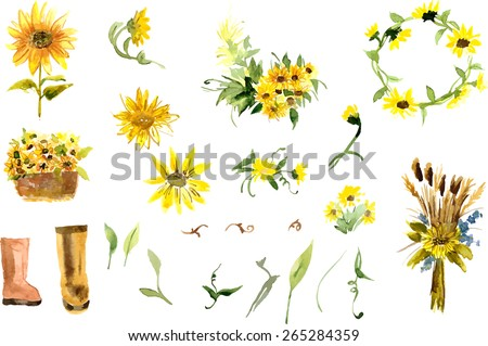 composition of yellow sunflower