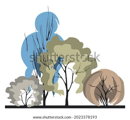 Compositional group of trees with an unusual crown in the form of a woman's hairstyle. Architectonics of woody plants. Landscape architecture in colors 2021