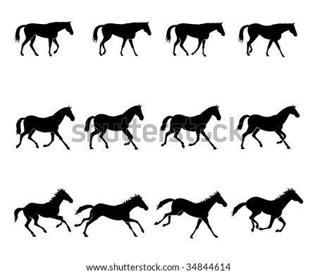 Computer generated illustration: the three natural gaits of the horses. First row: WALK  Second row: TROT  Third row: GALLOP Black silhouettes on white background