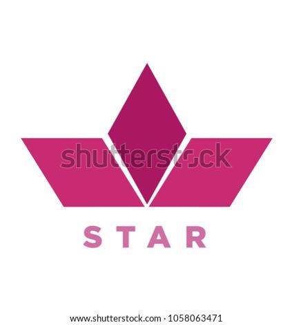 Concept Casual Flat Half Star Logo