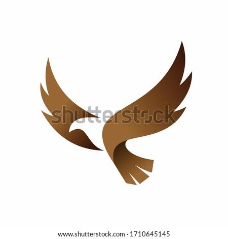 condor vector logo  bird logo