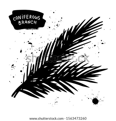 Coniferous branch or palm branch hand drawn illustration. Black and white sketch for winter or tropics design