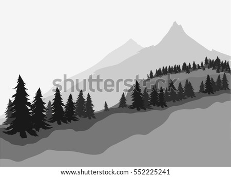 coniferous forest and mountains