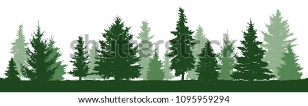 Coniferous forest, vector silhouette. Trees pine, fir, spruce, christmas tree. Isolated trees on a white background