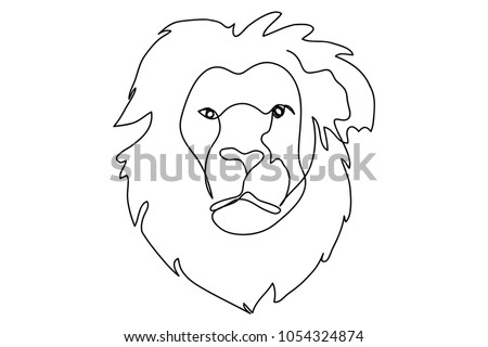continuous line drawing of a lion, wildlife vector illustration.