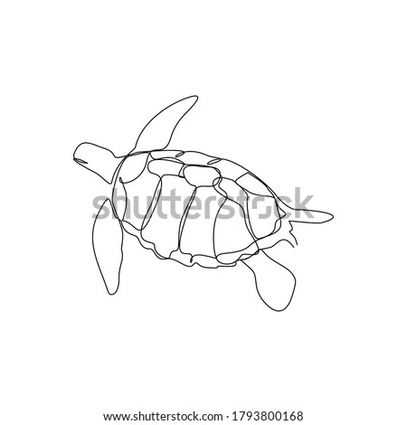 continuous line drawing of sea