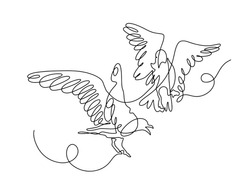 continuous one line drawing of two birds play with each other in flight in modern minimalistic style, mono line vector illustration