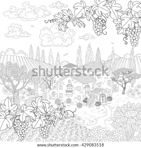 contoured summer landscape with