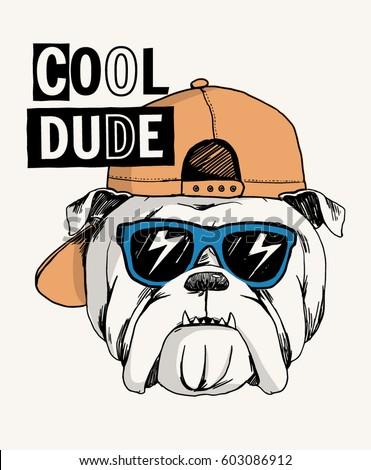 cool bulldog illustration with