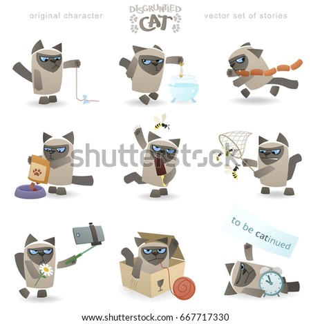 Cool disgruntled tomcat. Funny vector set of cat events. Siamese breed kitty with a grumpy behavior. Clean storyboard with a simple and stylish geometric shapes allow for a variety of animation.