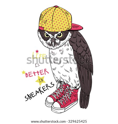 cool owl dressed up in sneakers