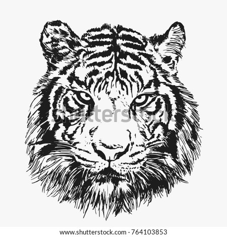 Cool tiger face. Vector illustration