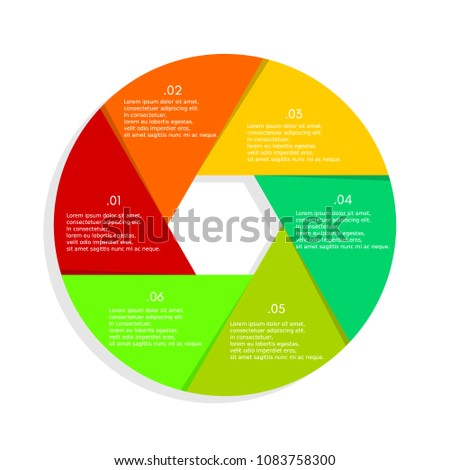 coorful infographic circle