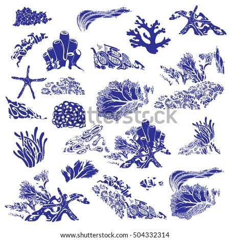 Coral reef and underwater flora. Corals, polyps, seaweed and deep water plants. Vector Illustration