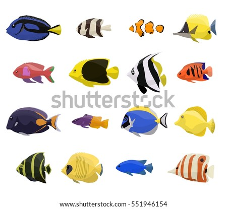 Royalty free fish species index of red sea fish for Types of red fish