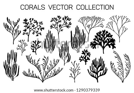 Coral reef underwater plans vector collection. Aquarium, ocean and marine algae water plants, corals isolated on white. Black staghorn and pillar corals and polyps silhouettes set.