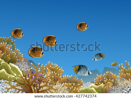 coral reef with butterfly fishes