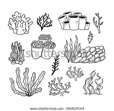 Coral Reef with Fish Vectors - Download Free Vector Art, Stock ...