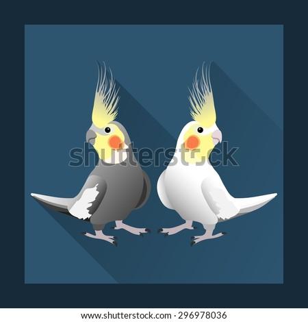 Corella parrot, exotic bird in flat style - vector illustration