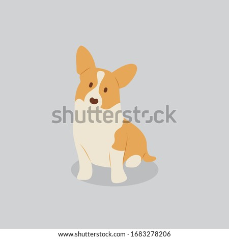 Corgi dog vector cartoon illustration. Cute friendly welsh corgi puppy, isolated on grey. Pets, animals, canine theme design element in contemporary simple flat style Foto stock ©
